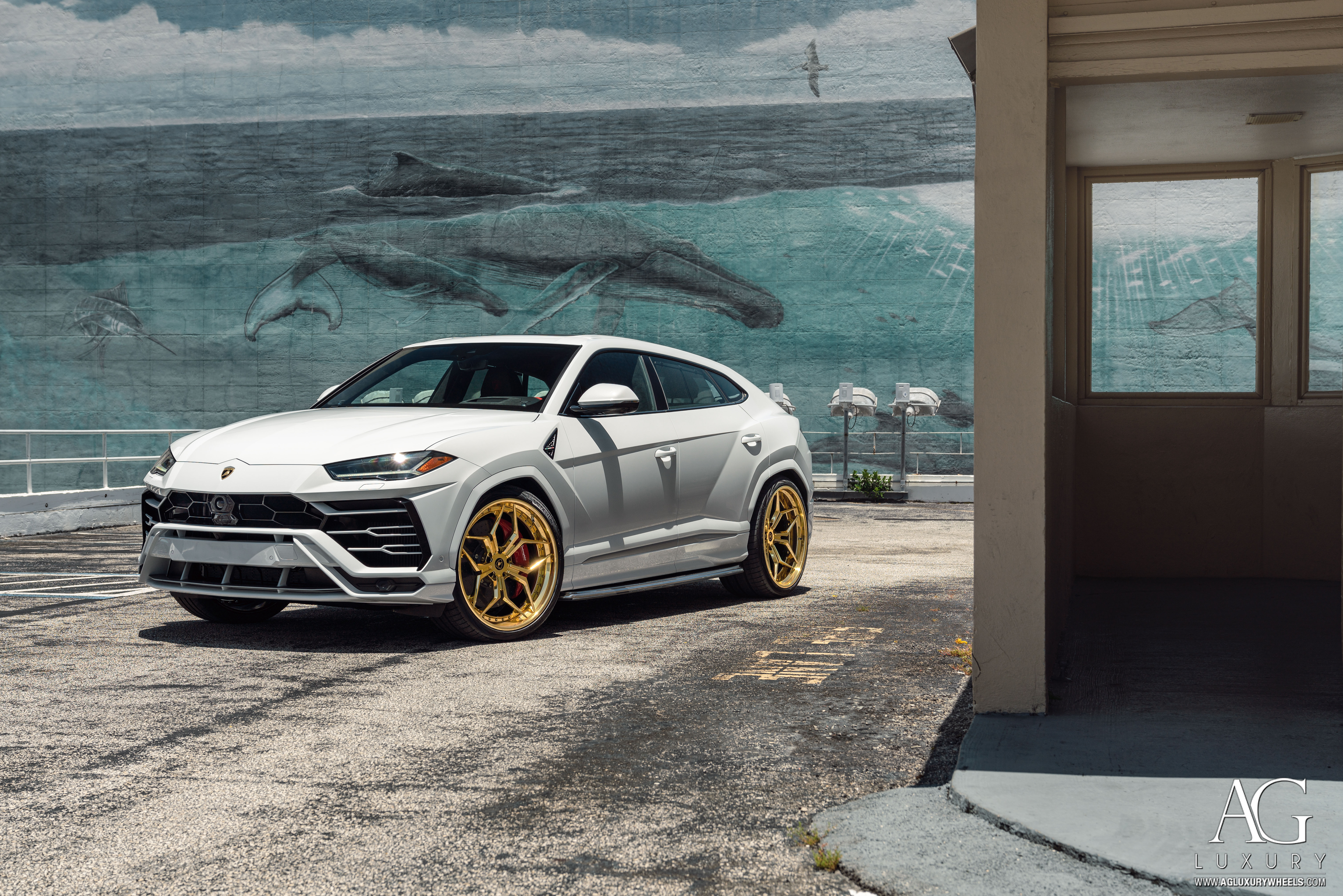 Lamborghini Urus on AGLuxury AGL56 Forged 3-Piece Wheels